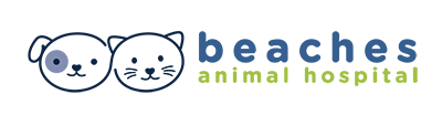 Beaches Animal Hospital